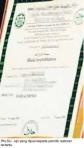 sijil halal palsu