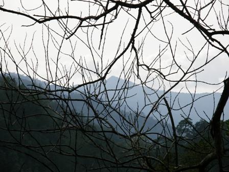 Gunung Nunuk Sirung di lihat dari dekat